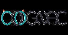 http://www.era-orleans.org/cognac/logo/logo5.png